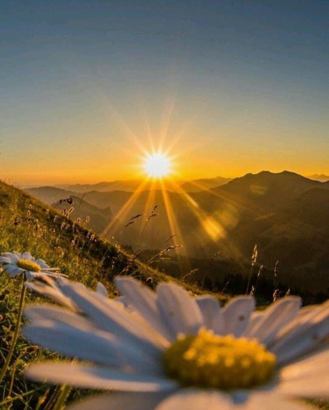 كل يوم نرى شروق الشمس لتزويدنا برسالة مفادها أن الظلام دائما ما يتم التغلب عليه بالضوء إنها قوة الخي Nature Pictures Nature Photography Cute Tumblr Pictures