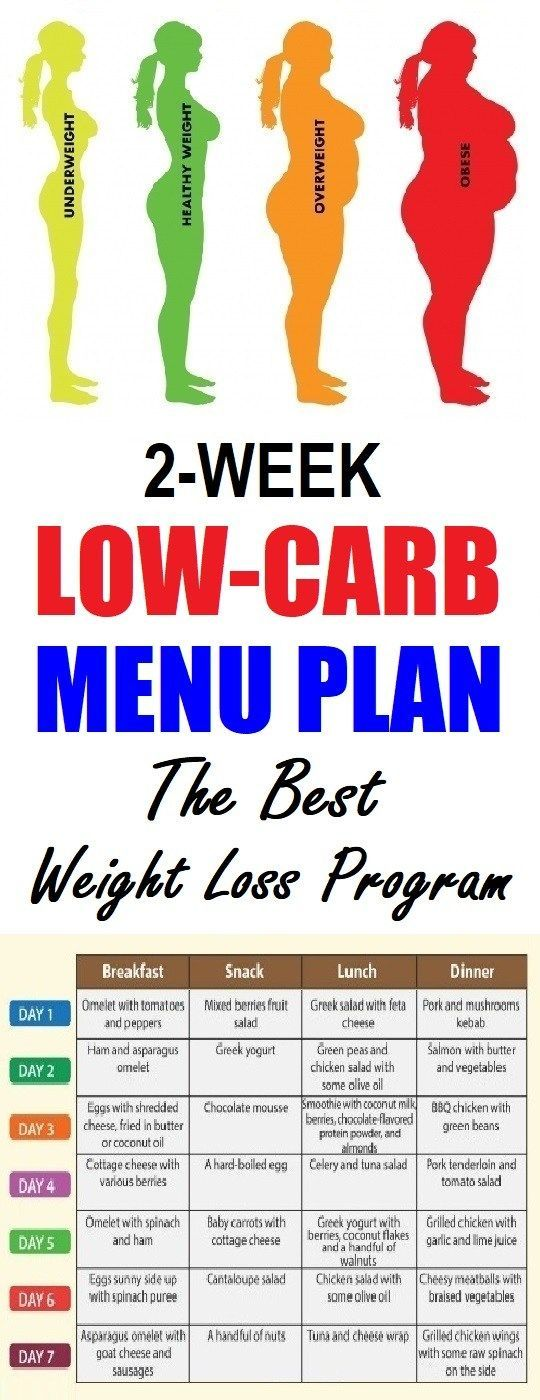 Pin on Weight Loss Programs Low Carb