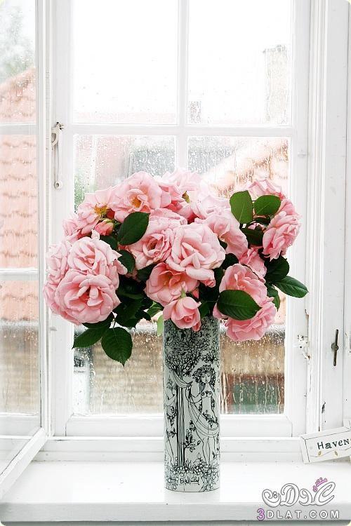 زهور طبيعية جميلة صور ورود طبيعية فازات ورد رقيقة2015 Flowers Flower Arrangements Pretty Flowers