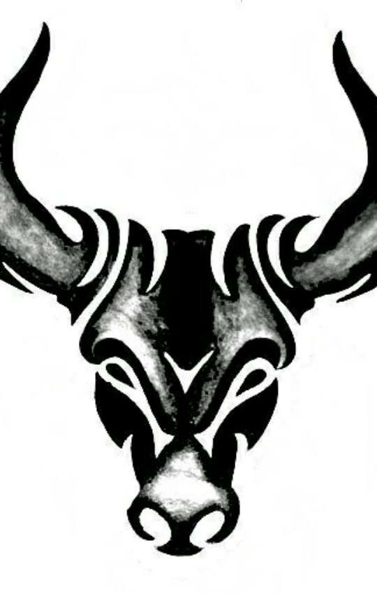 tribal bull tattoo design sabloane pinterest tattoo designs tattoo and tatoos. Black Bedroom Furniture Sets. Home Design Ideas
