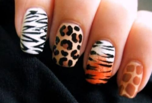 Nail Art Skin Zebra Leopard Tiger Giraffe Animal Wild