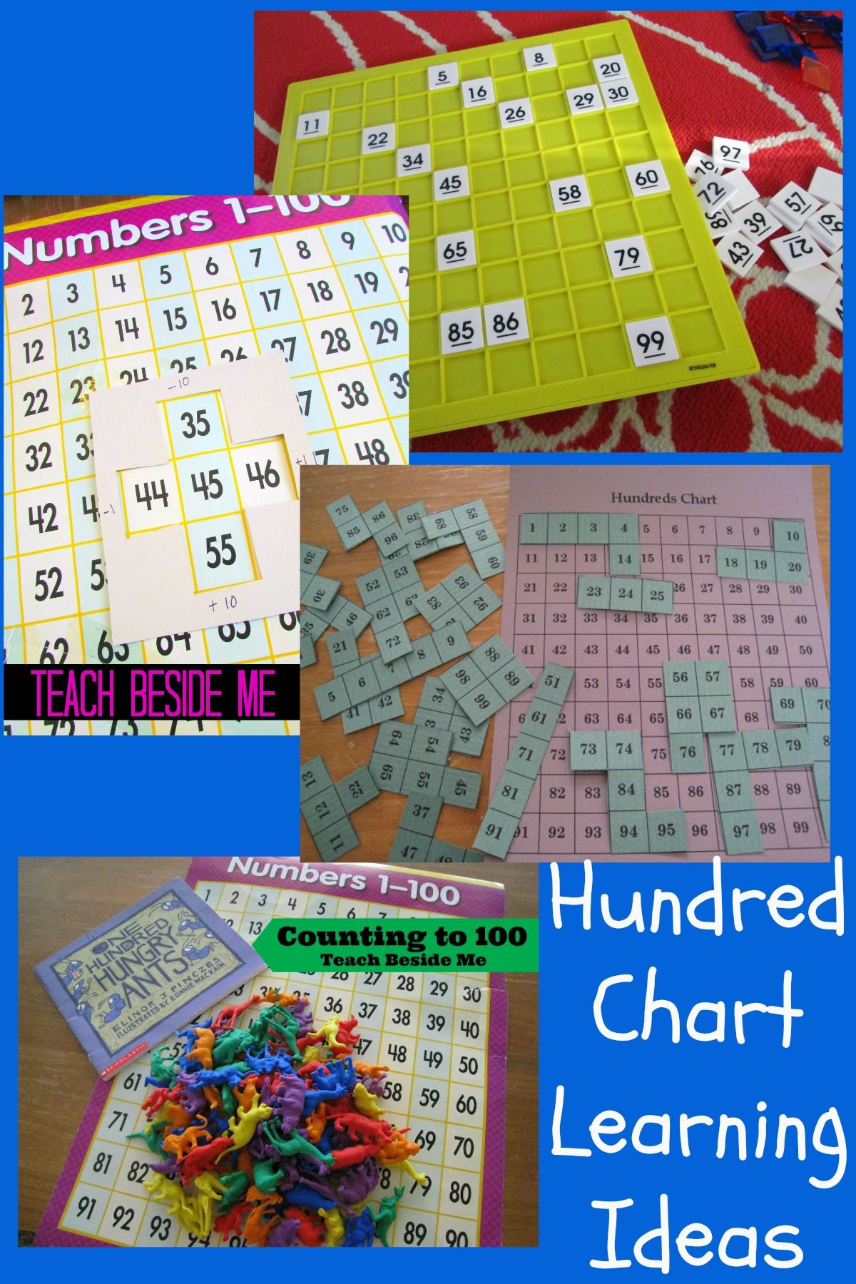 Hundred Chart Learning Ideas