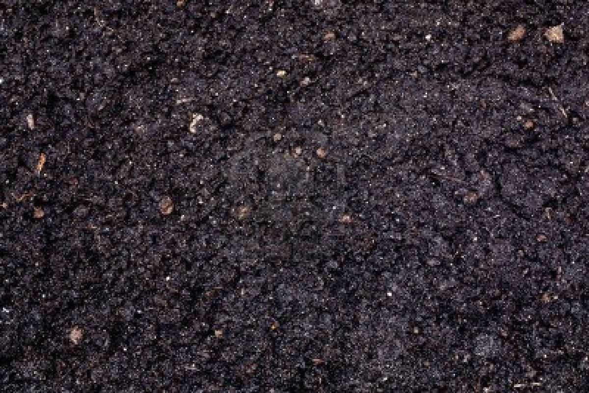 Black soil texture the image kid has it for Soil texture