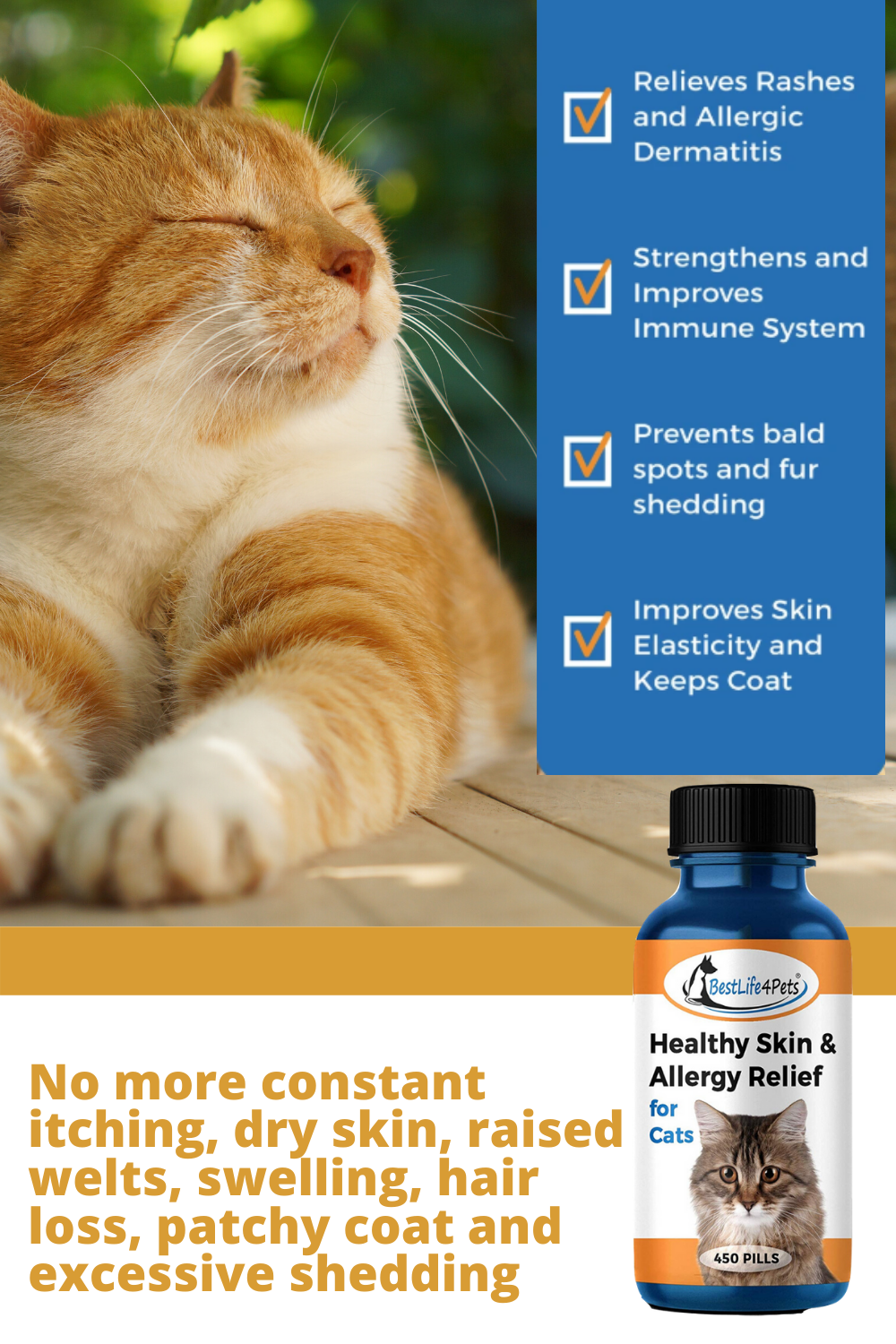 Is your kitty dealing with symptoms of