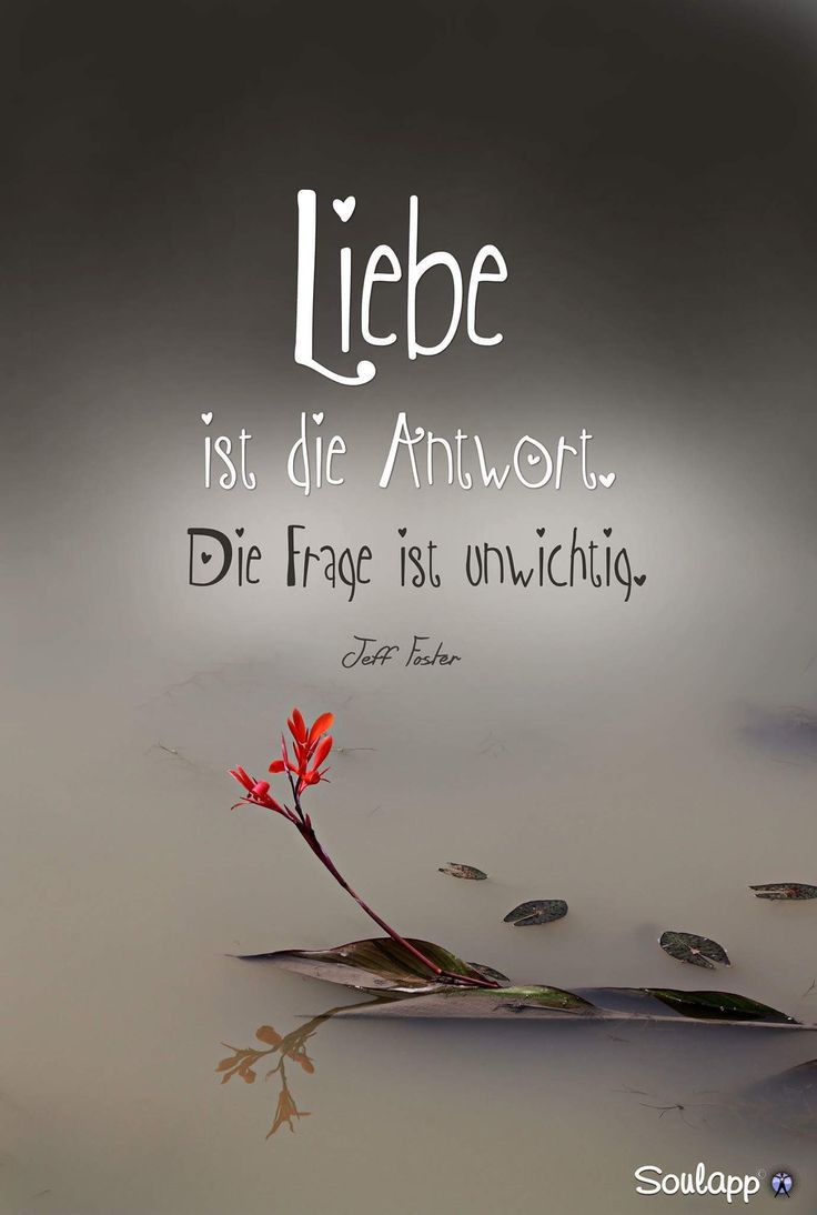 Liebe ist die Antwort - #Antwort #Die #ist #Liebe