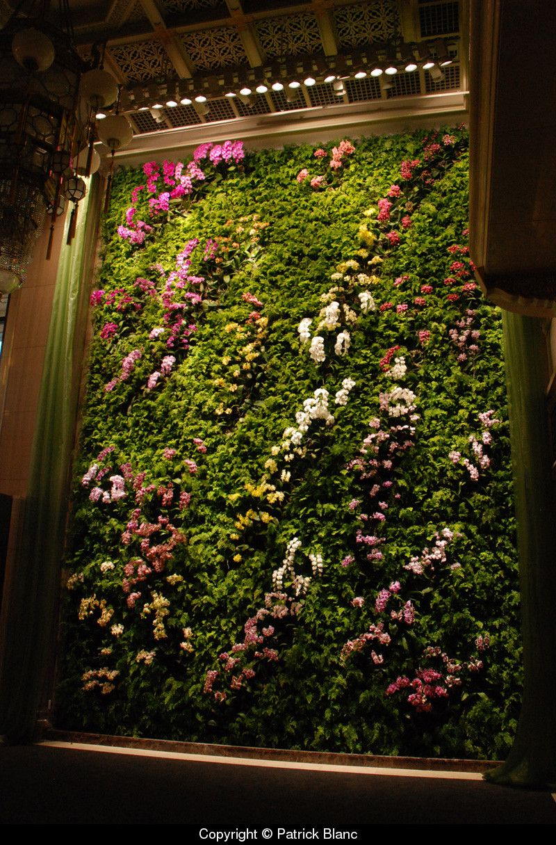 Vertical garden for Butterfly Dance, Taipei by Patrick Blanc ...
