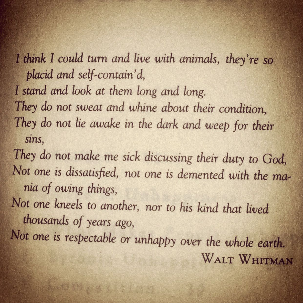 Walt Whitman Quotes Love: Animals - Walt Whitman