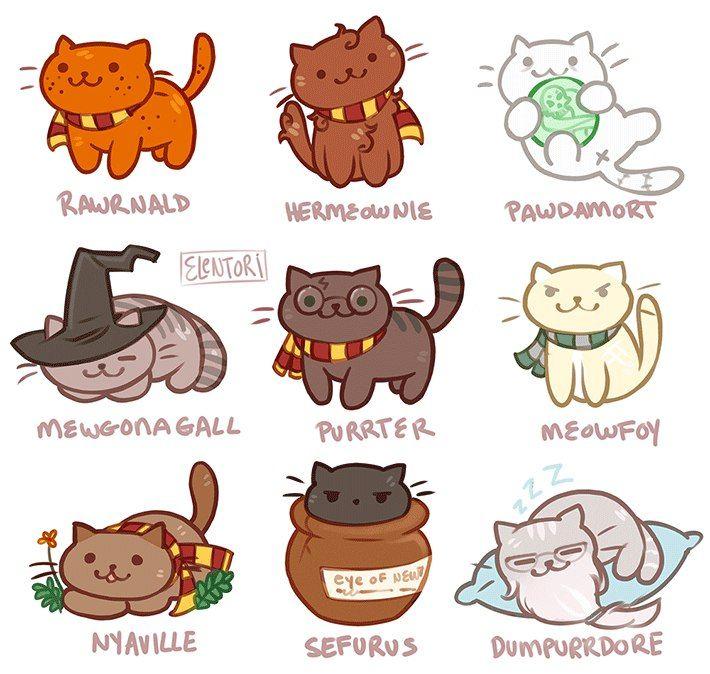 картинки кошка и гарри поттер этого