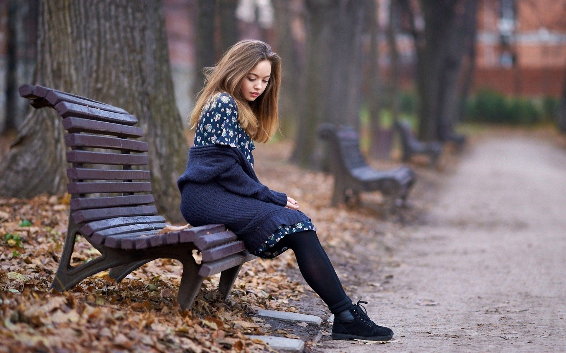 View Beauty Blonde Girl Park Bench Autumn Photo Hd Wallpaper Fall Photos Autumn Park Blonde Girl