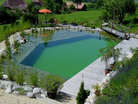 Schwimmteich-kantig Piscinas Pinterest Schwimmteich, Gärten - bilder gartenteiche mit bachlauf