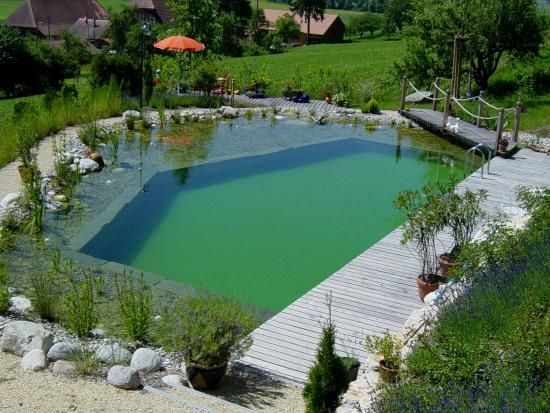 Awesome Schwimmteich kantig