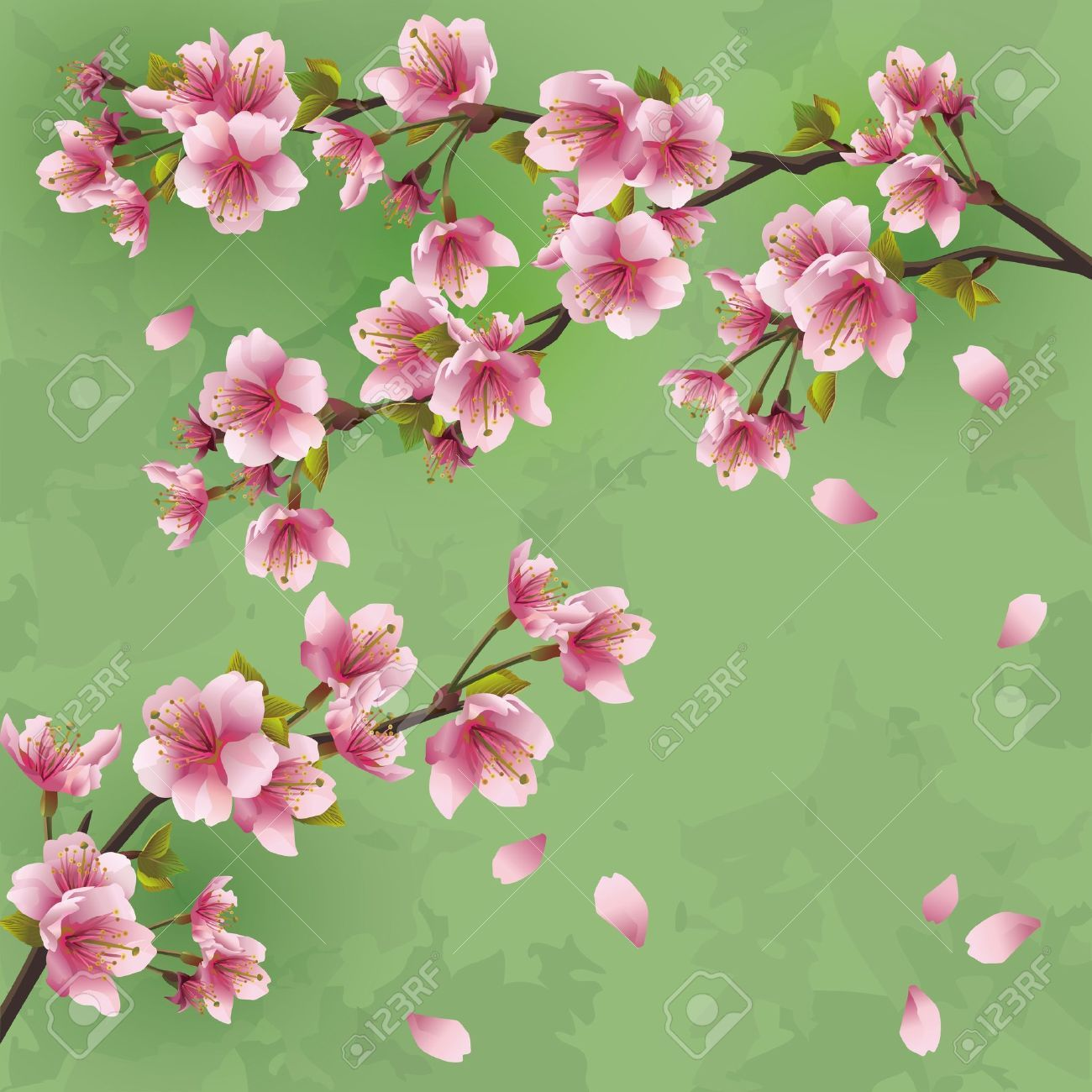 vintage cherry blossom illustration - Google zoeken   Dekupaj ...