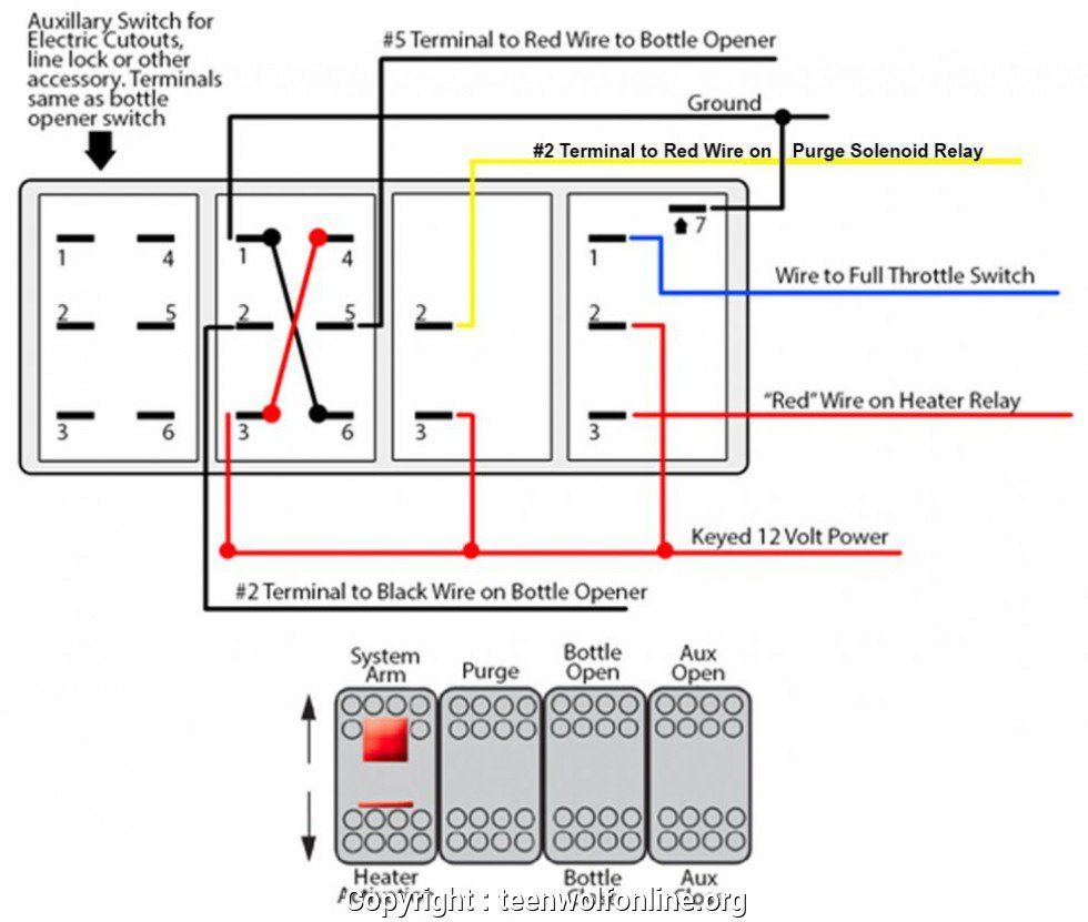 Painless Wiring Diagrams Switches