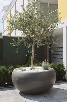 Aladin Extra mericial Planter Outdoor Pots for Trees