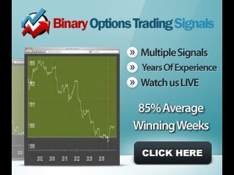 Binary Options Trading Signals Copy A Live Trader 85 Accuracy