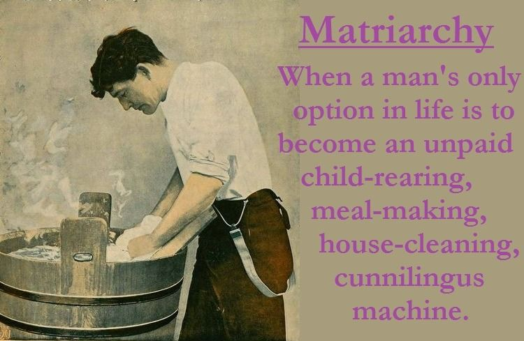 matriarchal misrepresentation Matriarchal is, again, a unit, group of humans or animals (whales, nuns, fatherless homes, etc) where the female has the ultimate decision of where to hunt, feed, may even be the only one allowed to breed (as in meerkats, queen ants and bees, etc.