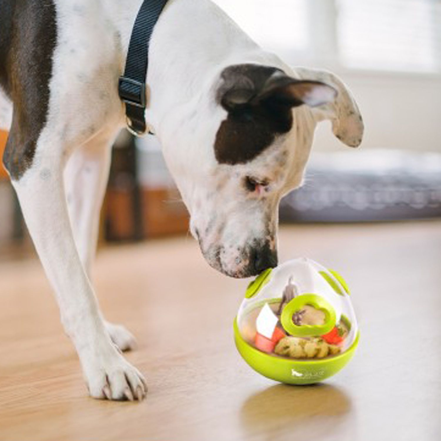 5 Best Dog Toys In 2020 Top Rated Pet Toys Fully Reviewed