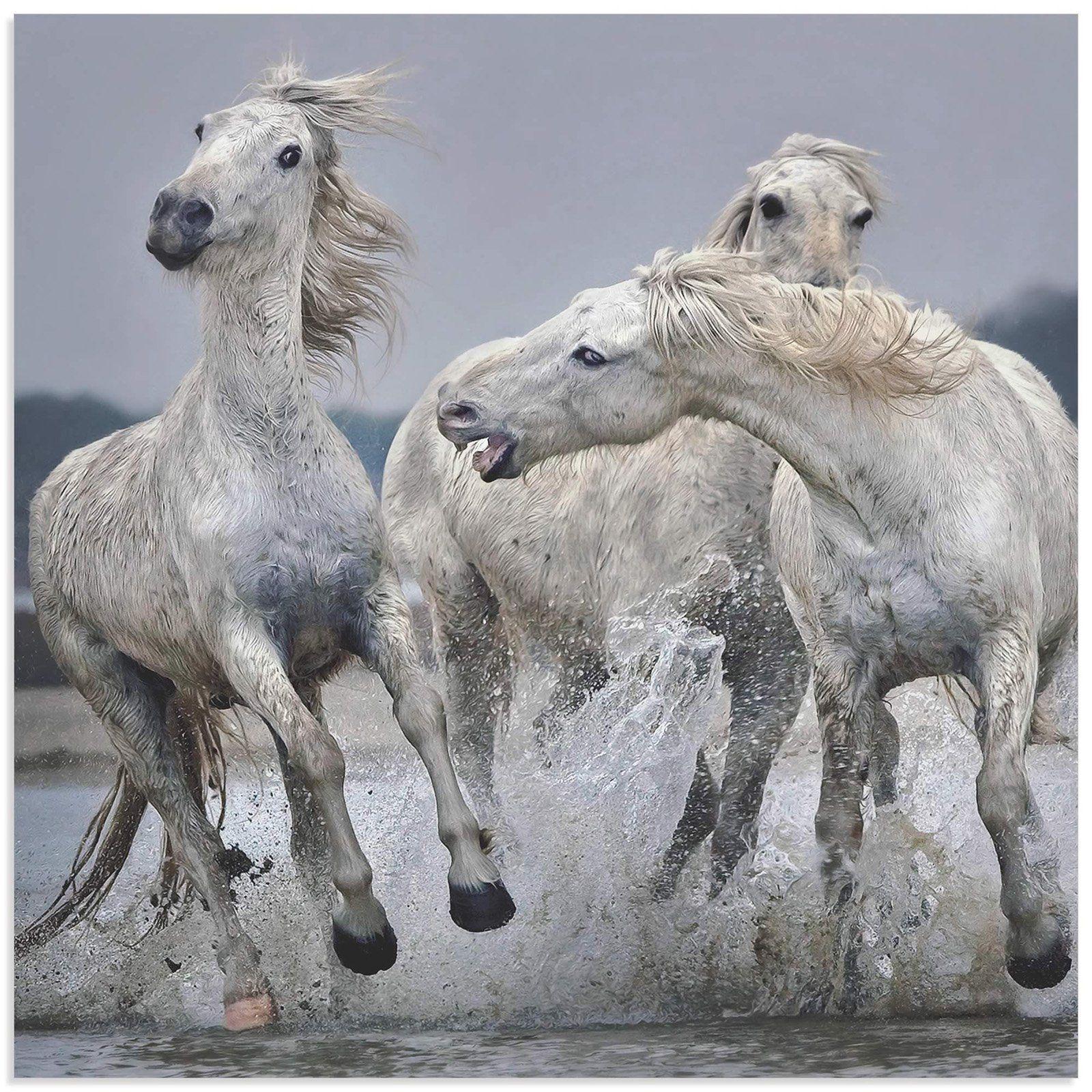 Metal Art Studio White Horse On Water Wall Art Horse Art