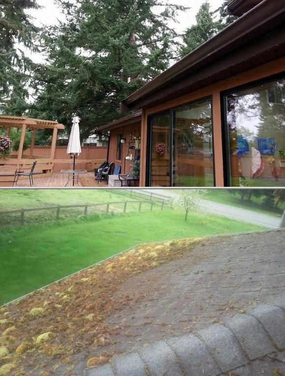 This Enterprise Is One Of The Professional Cleaning Companies That Specialize In Window Washing They Do Gutter Cle With Images Washing Windows House Wash Cleaning Gutters