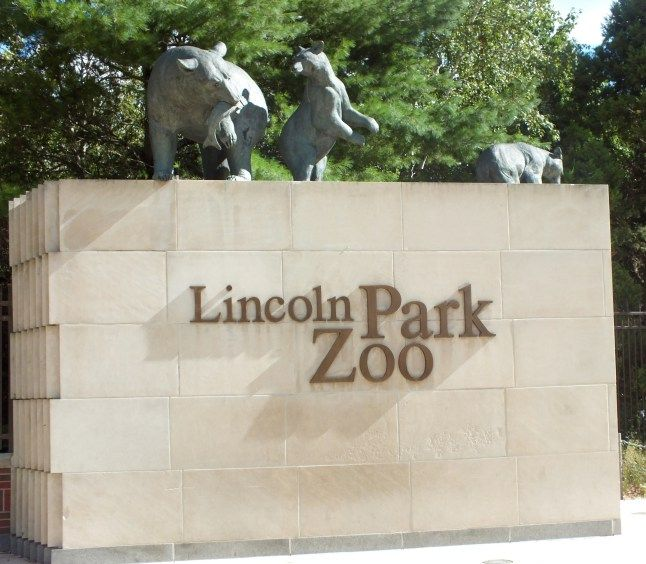 Account Suspended Lincoln Park Zoo Lincoln Park Zoo Chicago Kids Attractions