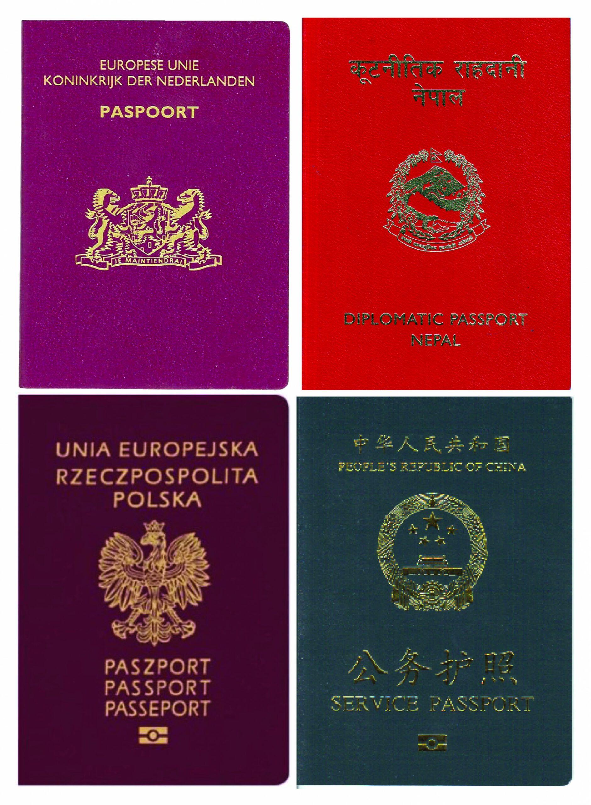 10 Border Crossing Card History The Supreme Cloister Said Monday