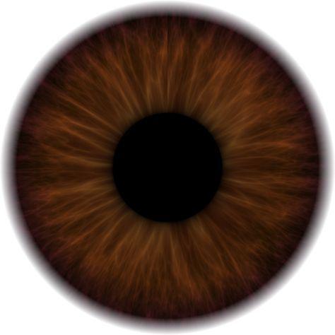 63 Trendy Eye Iris Drawing Tutorial Irises Iris Drawing Iris Eye Eye Texture