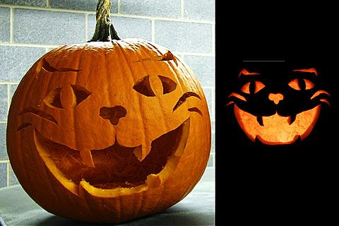 Cat pumpkin carvings haunting halloween pinterest for Cat pumpkin designs to carve