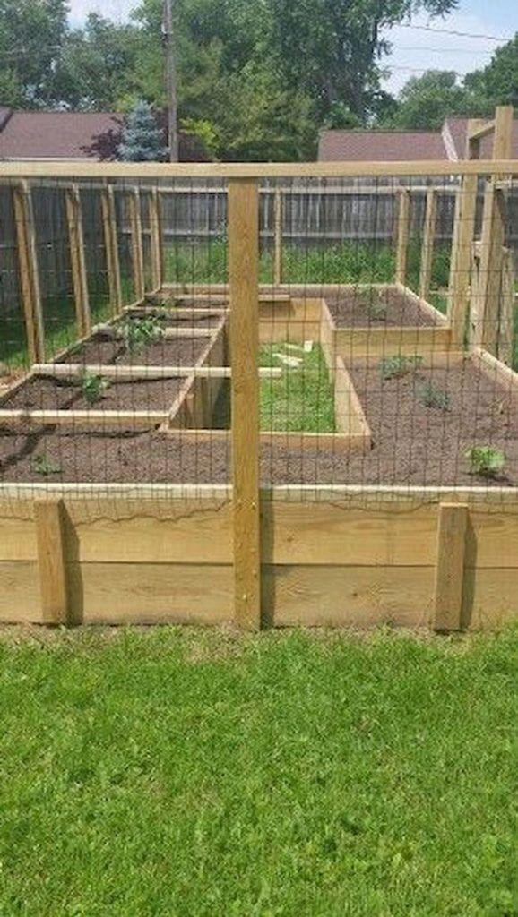 Shade Garden Ideas in 2020 | Diy raised garden, Elevated ...