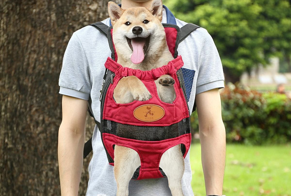 Are you a pet owner who is in the market for a dog backpack ...