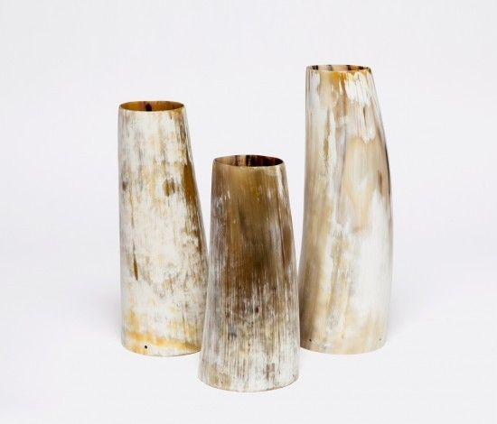 Awesome Aiden Horn Vases | $280