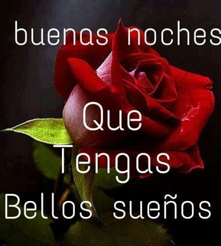 Imagen De Una Rosa Roja Buenas Noches Para Whatsapp Descarga Esta