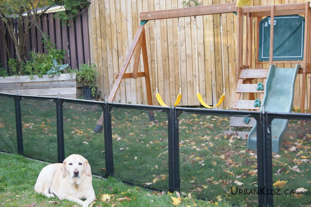 Delicieux New Ideas Retractable Fence With Dog Wooden Fence With Removable Fence  Removable Fence Design Ideas