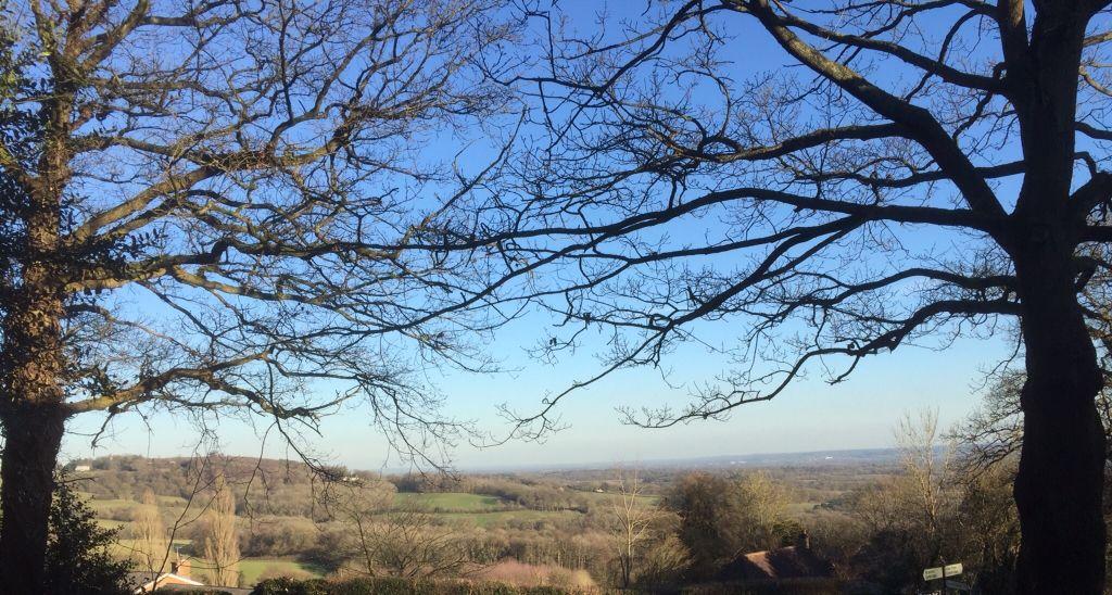 Trees Embracing Toys Hill Westerham Kent Glorious Kent