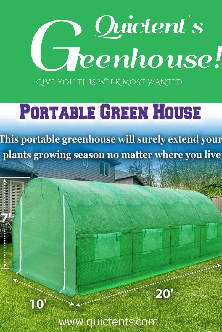 Quictent S 20 X10 X7 Greenhouse Greenhouse Kit Large Greenhouse Greenhouse