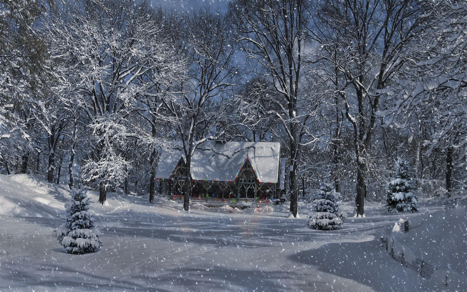 Schnee Baume Haus Wald Landschaft Beleuchtung Winter Gluhlampen Winter Wallpaper Forest Wallpaper Free Winter Wallpaper
