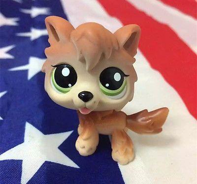 Littlest Pet Shop LPS#2141 Brown Tan Timber Wolf Dog w//accessories
