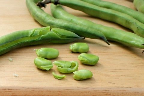 Come cucinare le fave fresche sgranarle e non farle for Cucinare edamame