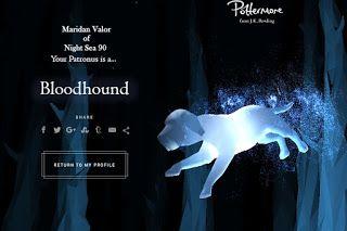 Pin On My Blog Night Sea