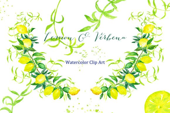 Lemon & verbena. watercolor clipart by LABFcreations on Creative Market