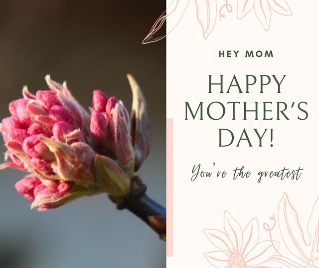 Happy Mother S Day 2021 May 9 Download Images Pics And Hd Photos Mothers Day Quotes Happy Mothers Day Images Happy Mothers Day