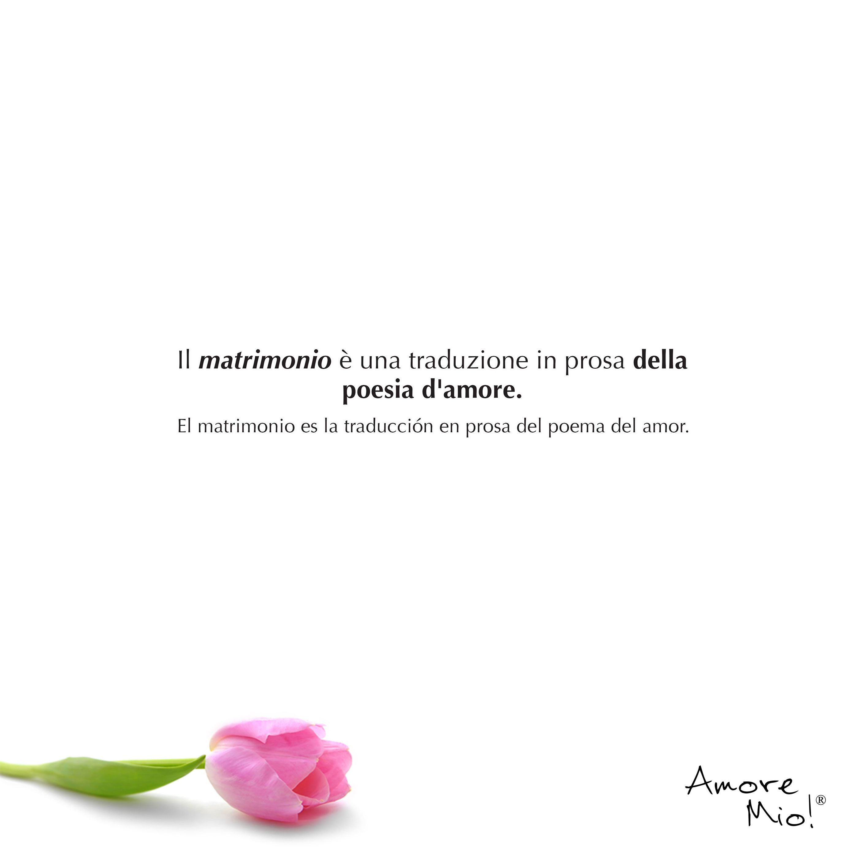 Frases Cortas De Amor Anillos De Compromiso Pinterest Engagement