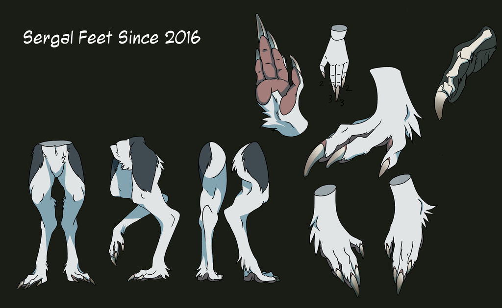 Preview of Official Sergal Ref] Sergal Feet 2016 by mick39