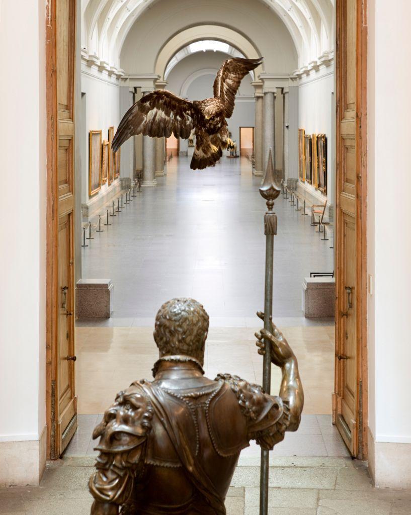 Museo Nacional Del Prado Historias Naturales. Proyecto De Miguel Ngel Blanco Madrid