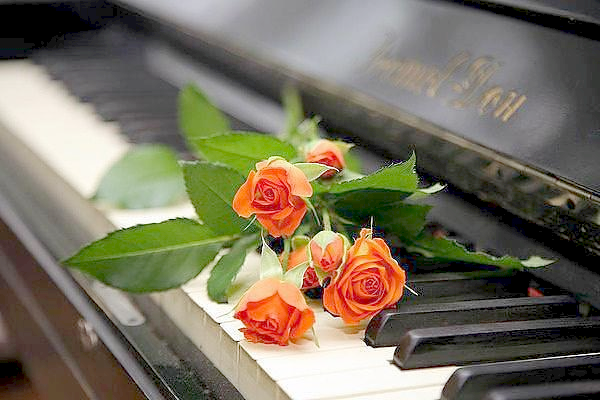 roses and piano
