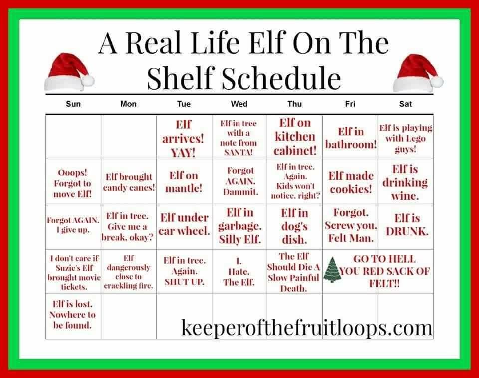 Elf on the shelf schedule! Lol! Christmas Celebrations