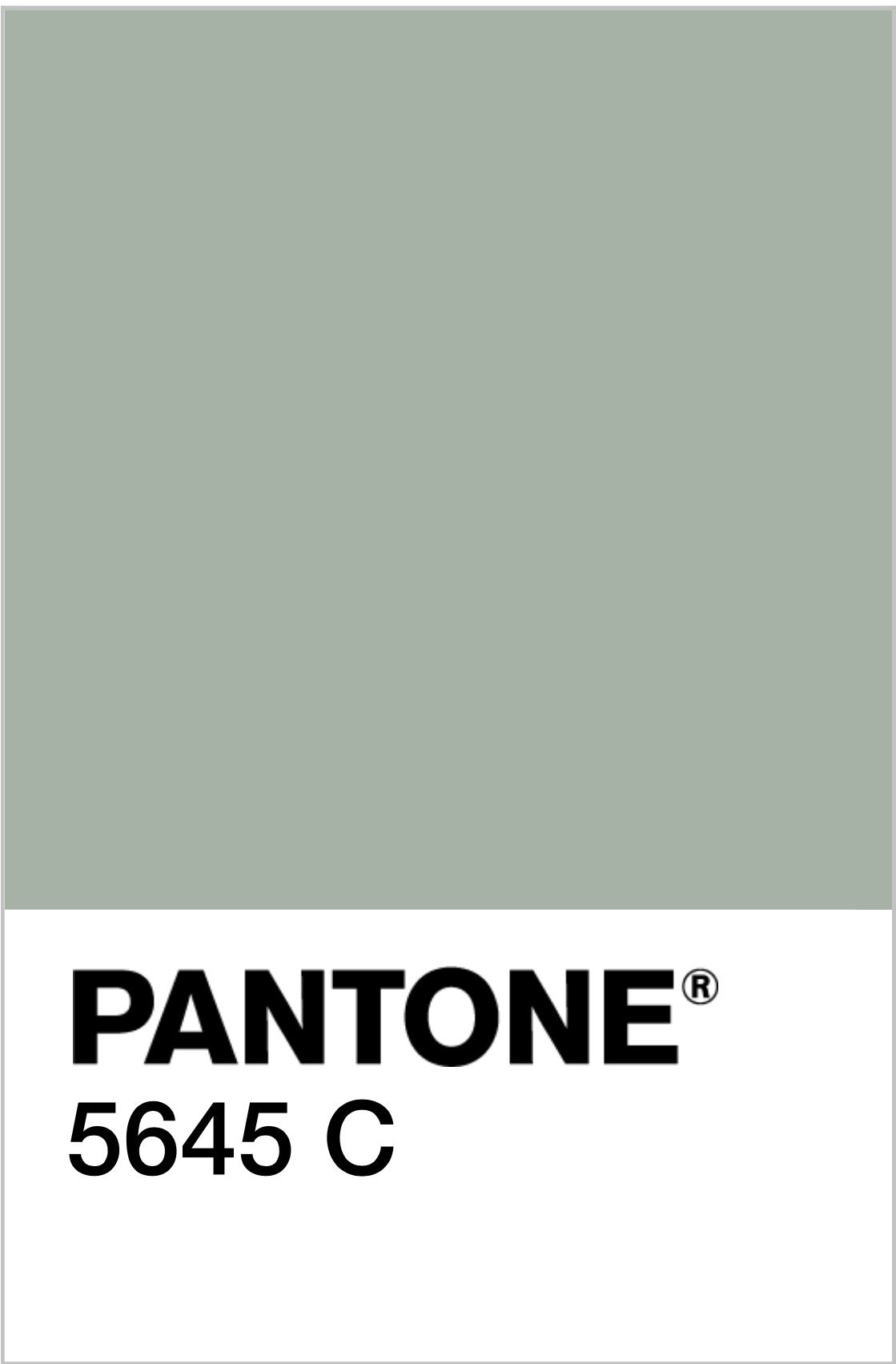 Pantone 5645c sage for the home sage green walls - What color is sage green ...