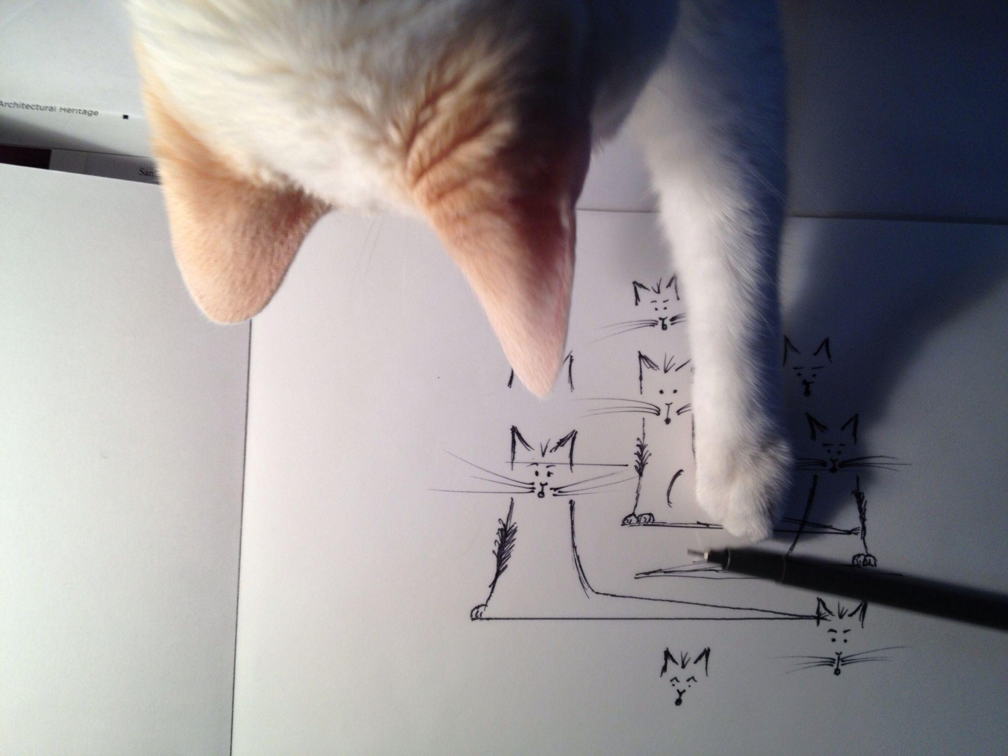 #clickittycat