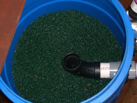 Diy 55 gallon barrel pond filter ponds pinterest 55 for Pond pre filter diy