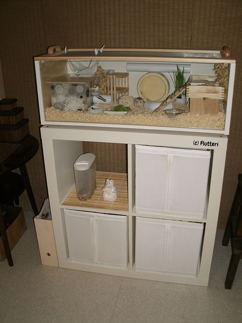 ikea billy roborovski hamster cage by flutteri via flickr. Black Bedroom Furniture Sets. Home Design Ideas