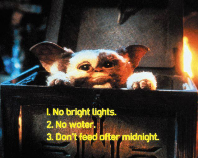 Gremlins Gizmo Best Christmas Movies Gremlins Best Holiday Movies